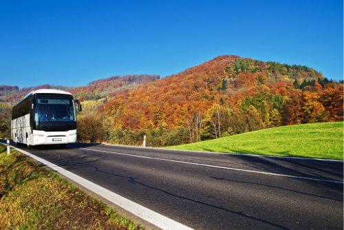 Transport excursii elevi
